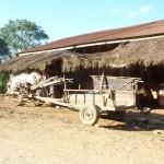 Hmong de Thailande et Laos-Le monde des Enfants Hmong