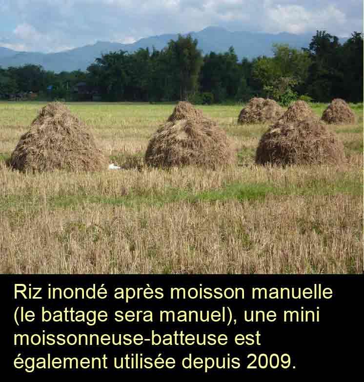 Moisson
